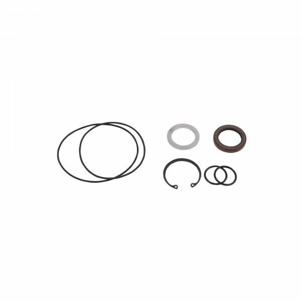 seal set kit for saw motor F11-10 (SuperSaw 350E-10)