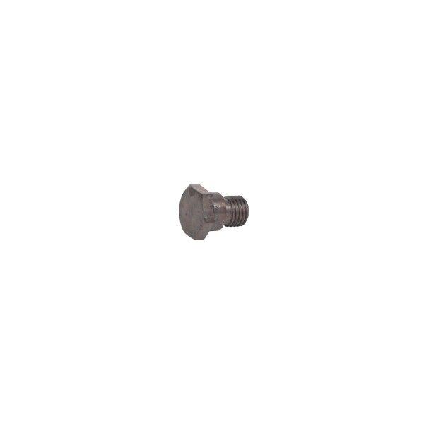 Locking screw (GLC 40/50)